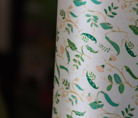 Vicia,  decorative sweet pea on white background