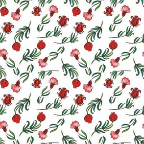 Pomegranate branches on white background