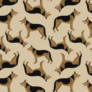 German shepherd on beige background