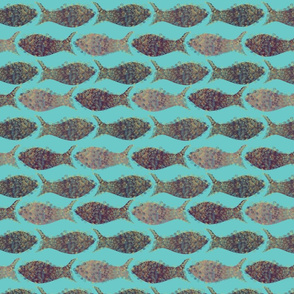 Fish_square_blue