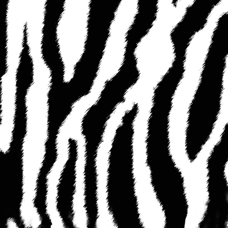 Zebra or White Tiger Stripes fabric by eclectic_house on Spoonflower - custom fabric