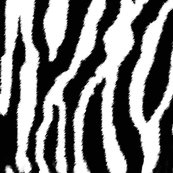Rzebra_or_white_tiger_stripes_shop_thumb