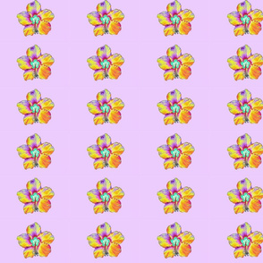 Psychedelic Hibiscus