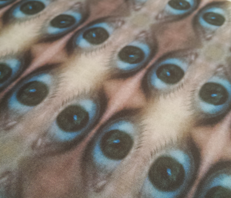 Eye Say