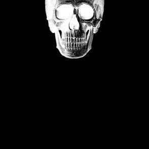 giant skull on black