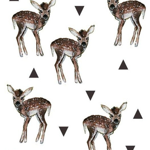 Fawns and Triangles
