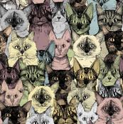 just cats retro
