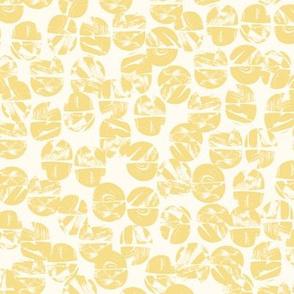 acorns citrus