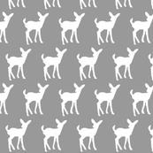 Baby Deer on Grey