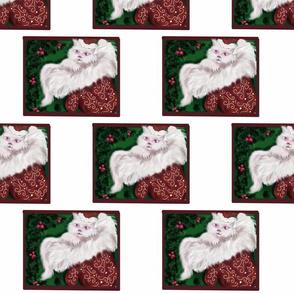 white kitty christmas box
