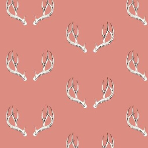 Whitetail deer antlers in rose