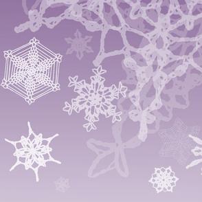 Snowcatcher Lavender Gradient 02