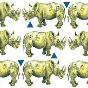 Rhinos and Triangles!