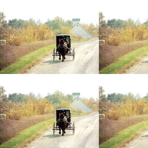 autumn amish buggy