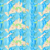 martha's vineyard watercolor map fabric