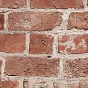 Rrrbrickwallpaper_shop_thumb