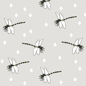 Dragonflies grey by MiaMea