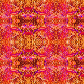 orange and purple anemones