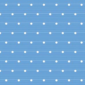 Chambrey Polka Dots