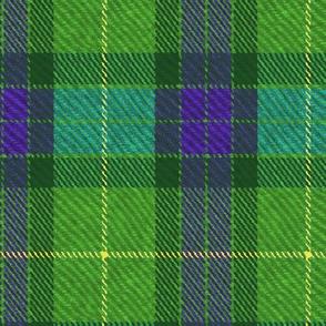Classic Tartan in Green and Purple