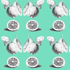citrus_mint