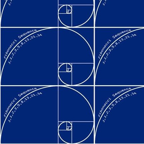Fibonacci Sequence Spiral  # 34