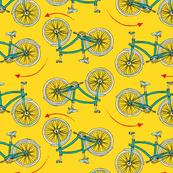 Yiikes Bikes