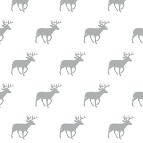 Grey Buck