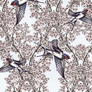 pink-blossom_swallows