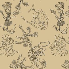 Homo Sapien Botanical Illustrations