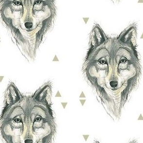 Wolf Plus Triangles
