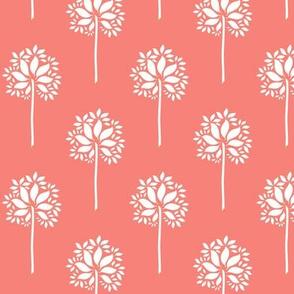 FlowerOrTreeCoral1