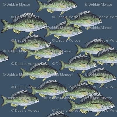 Fish_allover_reverse_preview