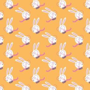 Rabbits in orange