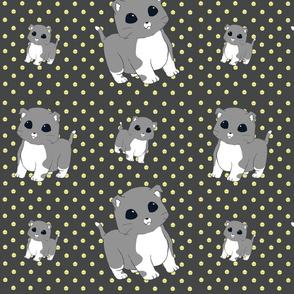 munchkin kitties