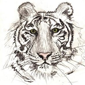 Tiger_-_Version_2