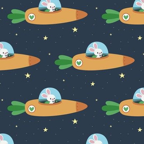 Space bunny and its carrot rocket