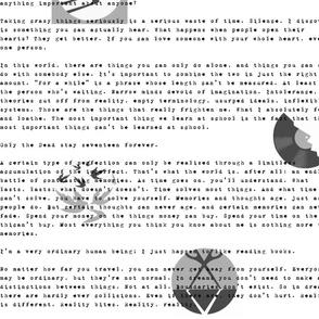 Murakami Excerpts