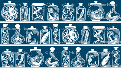 Wonders from a Cabinet of Curiosities (Blue Grey - 004466)