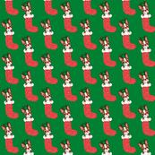 Rudolph Duke