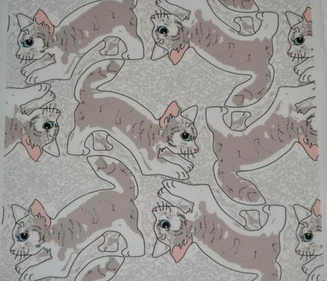 Pouncing Tabby Kitties