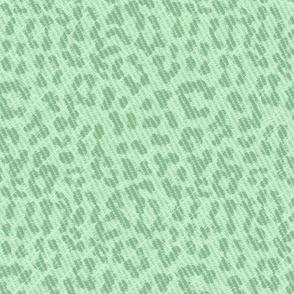 Snow Leopard scuffed mint