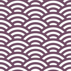 scallop in plum and white