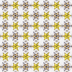Geometric Scalene Polygon on Grey