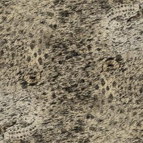 guepard_wood