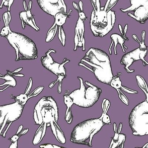 Mr. Jack Rabbit - Small Purple