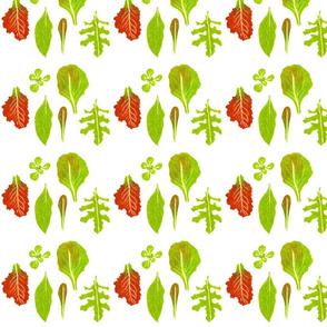 small lettuces