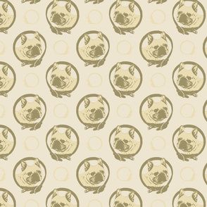 Collared French Bulldog portraits - tan