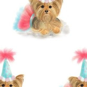 Birthday_Yorkie