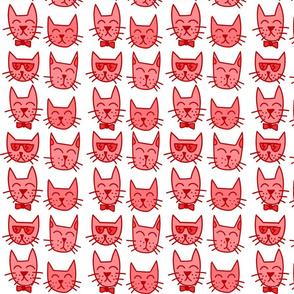 4_cats